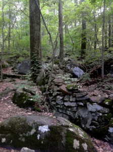 A remnant of the stone wall on Big Round Top behind which the 9th Massachusetts fought.